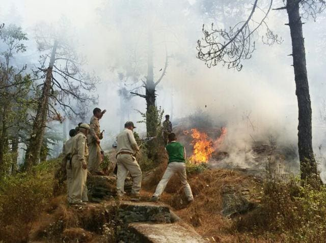 Forest guards trying to extinguish a forest fire in  Pauri district of Uttarakhand.