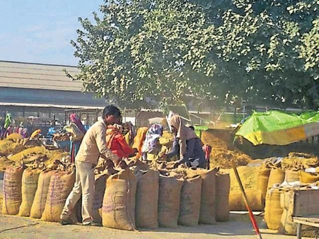 The grain market in Nabha.