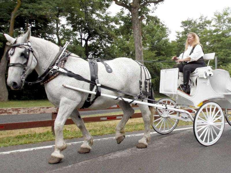 Rebecca Timm and Sandy Sidell ride in a horse-drawn carriage after being married in a group same-sex marriage in NY.