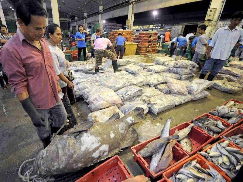 Workers sort fish out at the Mahachai fish market in Samut Sakhon province, west of Bangkok.