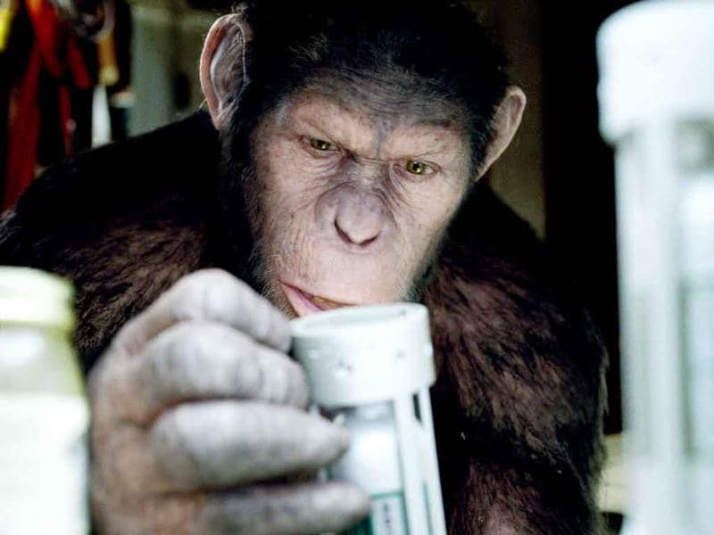 In this image released by Twentieth Century Fox, Caesar the chimp, a CG animal portrayed by Andy Serkis is shown in a scene from Rise of the Planet of the Apes.