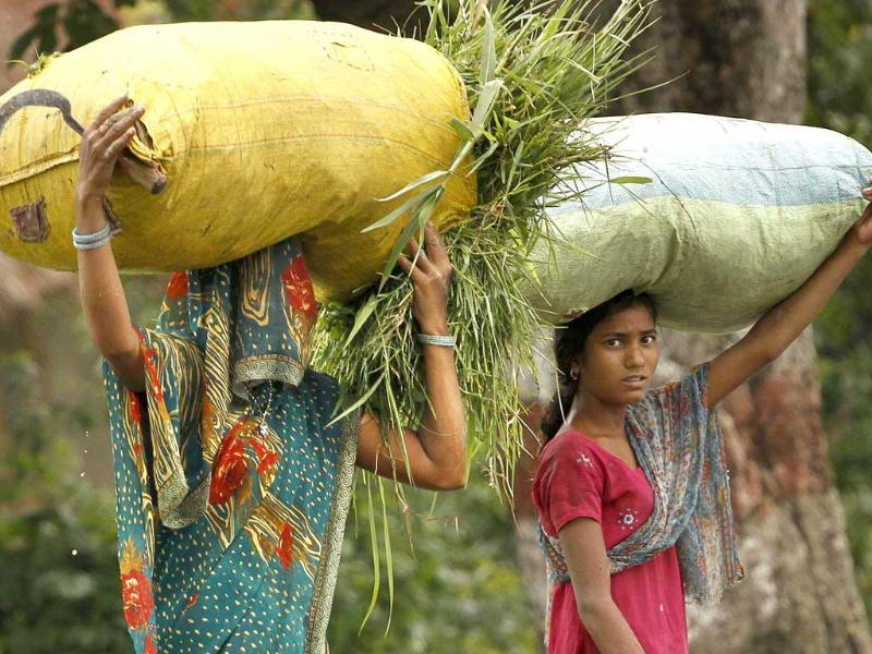 Women carry bags filled with fodder in Pawara village, Allahabad.