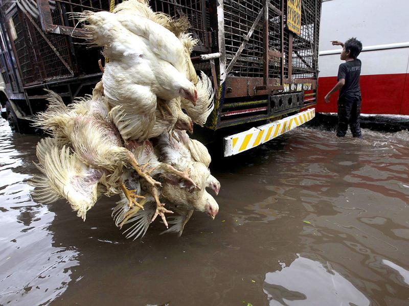 Chicken hang from a parked transport vehicle in a water logged street following heavy rains in Mumbai.