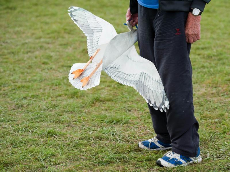 A man holds a small seagull kite at the 25th annual Bristol International Kite Festival on the Ashton Court Estate near Bristol.