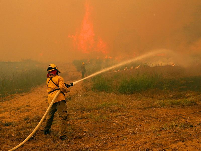 Firefighters from around the state battle a large wildfire on Highway 71 near Smithville, Texas.