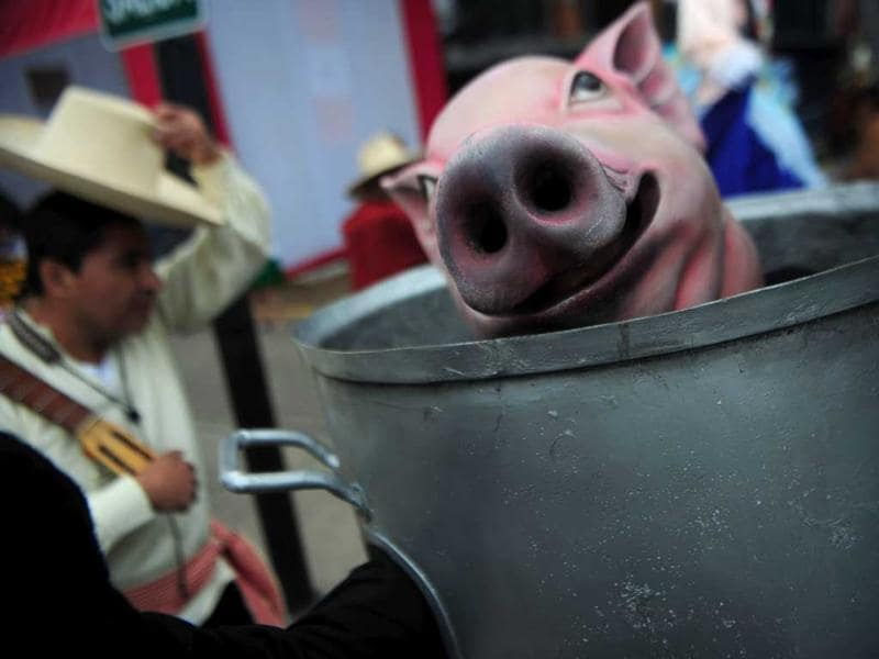 A man performs with a pig mask during the inauguration of the gastronomic fair 'Mistura' in Lima.