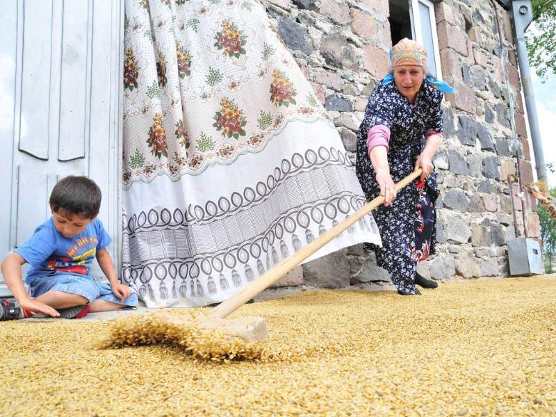 An Armenian woman rakes grain in her yard in Vardadzor. In the midst of the harvest season in Vardadzor, around 130 kms (80 miles) from the ex-Soviet state's capital Yerevan, women do the hard agricultural labour, prepare for the long winter ahead and raise their children practically without male assistance.