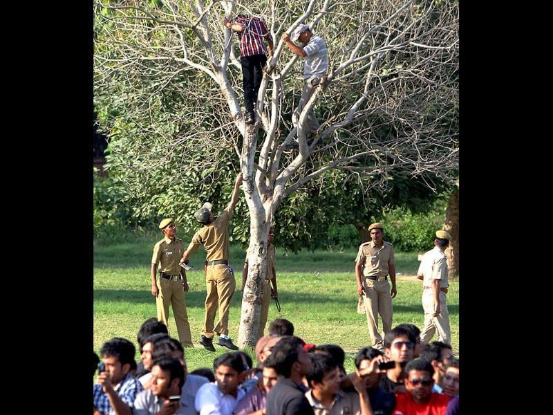 Policemen trying to bring down the enthusiasts who climbed a tree to get a view of the performance of Formula One racer Daniel Ricciardo at Rajpath in New Delhi.