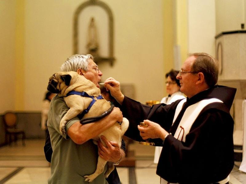 A man receives a consecrated wafer from a priest as he holds his dog before getting it blessed at Sao Francisco de Assis (Saint Francis of Assisi) Church in Sao Paulo. Pet owners bring their animals to be blessed every year on the day of Sao Francisco de Assis, Brazil's patron saint of animals.