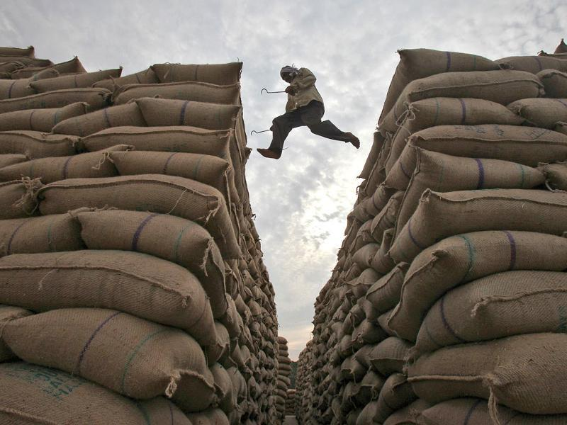 A worker leaps over stacked sacks of paddy at a wholesale grain market in Chandigarh.