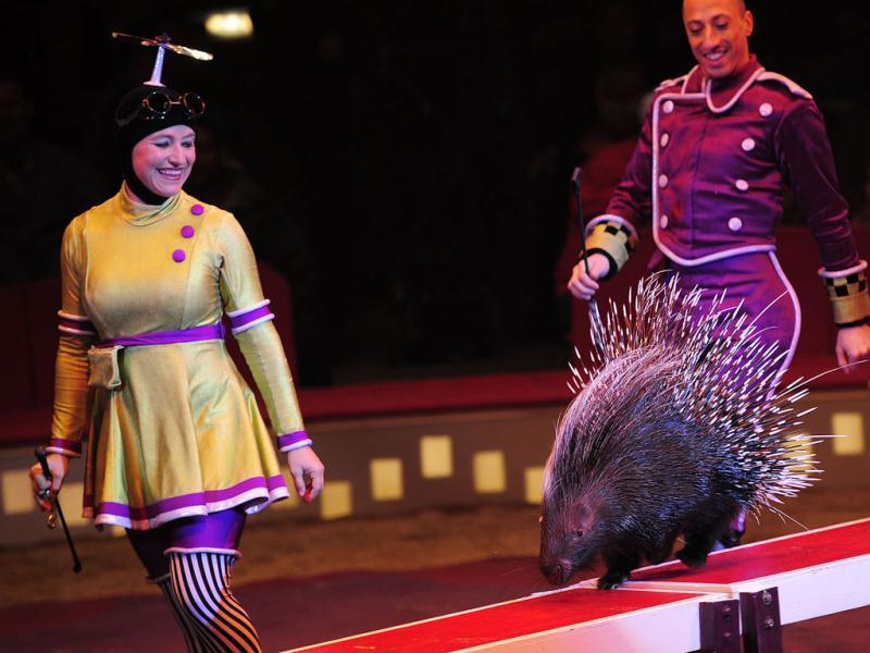 Jenny Vidbel and Andrey Mantchev perform with Percy, a trained porcupine, during a Big Apple Circus show in New York.