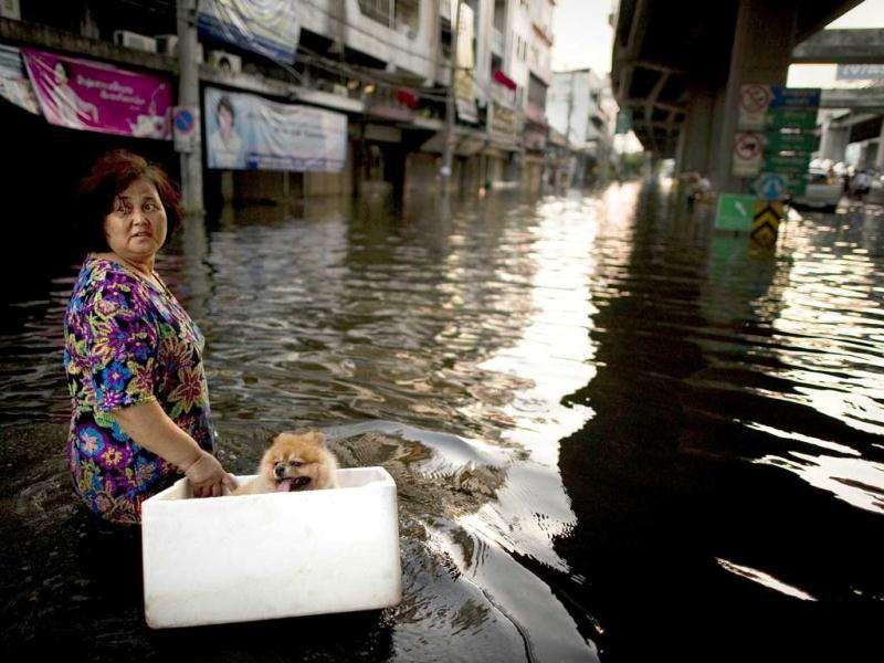 A woman walks with her dog, in a floating box, across floodwaters in a street next to the Chao Praya river in Bangkok.
