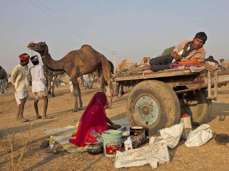 A camel herder looks on while a woman prepares food for him at the Pushkar fair in Pushkar, Rajasthan. Pushkar, located on the banks of Pushkar Lake, is a popular Hindu pilgrimage spot that is also frequented by foreign tourists for its annual cattle fair and camel races.