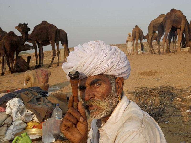 A camel herder smokes at the Pushkar fair in Pushkar, Rajasthan. Pushkar, located on the banks of Pushkar Lake, is a popular Hindu pilgrimage spot that is also frequented by foreign tourists for its annual cattle fair and camel races.