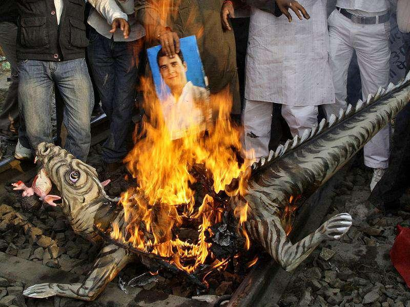 Demonstrators from Samajwadi Party burn a mock model of crocodile with a portrait of Rahul Gandhi during a protest in Allahabad.