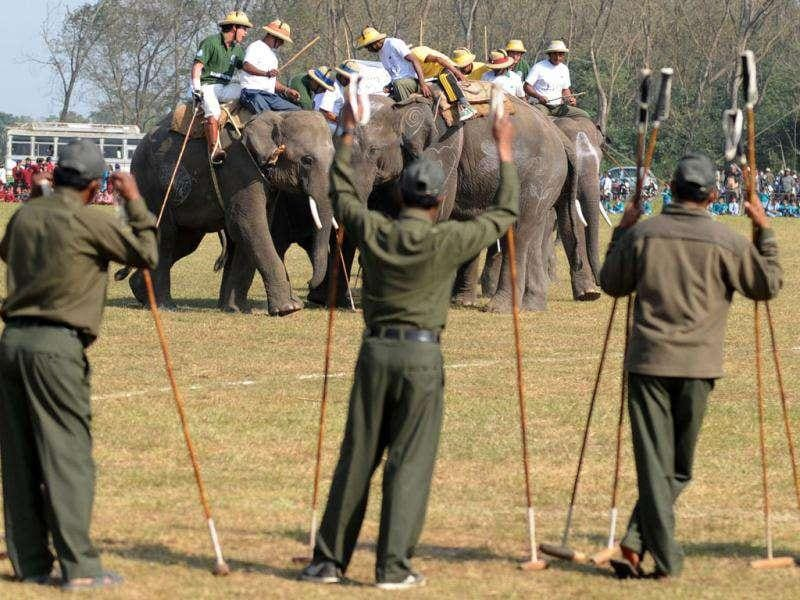 Elephant polo players from Tiger Tops Tuskers (L) and National Park Nepal (R) vie for the ball during the 30th International Elephant Polo Competition in Kathmandu.