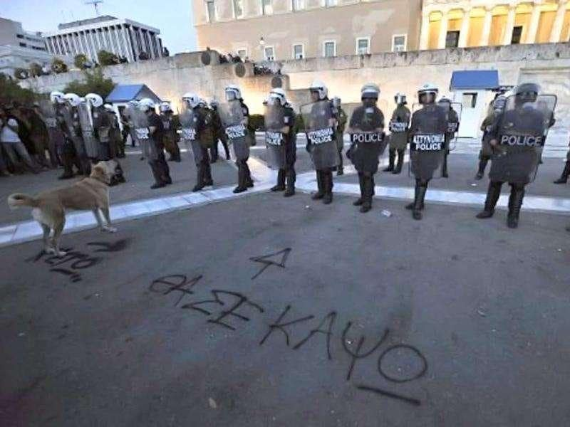 A dog barks in front of a riot police cordon in front of the parliament in Athens. Slogan, written on the floor, reads: