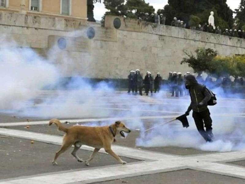 A protester kicks a tear gas canister in front of the parliament in Athens during a demonstration to commemorate the police killing of a student three years ago which sparked violent riots lasting weeks. Pupils and students marched to mark the December 6, 2008 death of Alexis Grigoropoulos, 15, shot by police as Greece first came under pressure from the eurozone debt crisis. AFP Photo/Louisa Gouliamaki