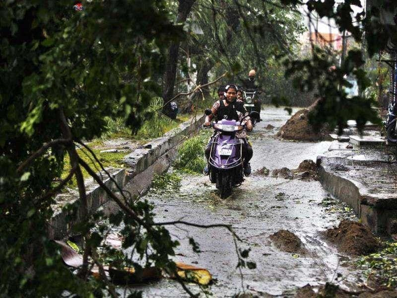 Motorcyclists drive past fallen trees during heavy rain and winds in Pondicherry. AP Photo/Aijaz Rahi
