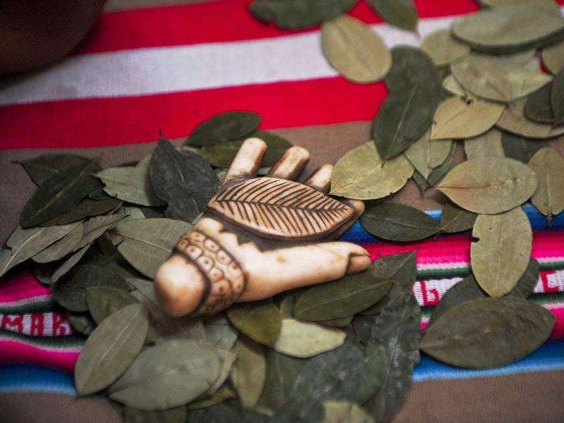 Picture of coca leaves being used in a ritual of predictions at the Wishes Market in Lima. AFP
