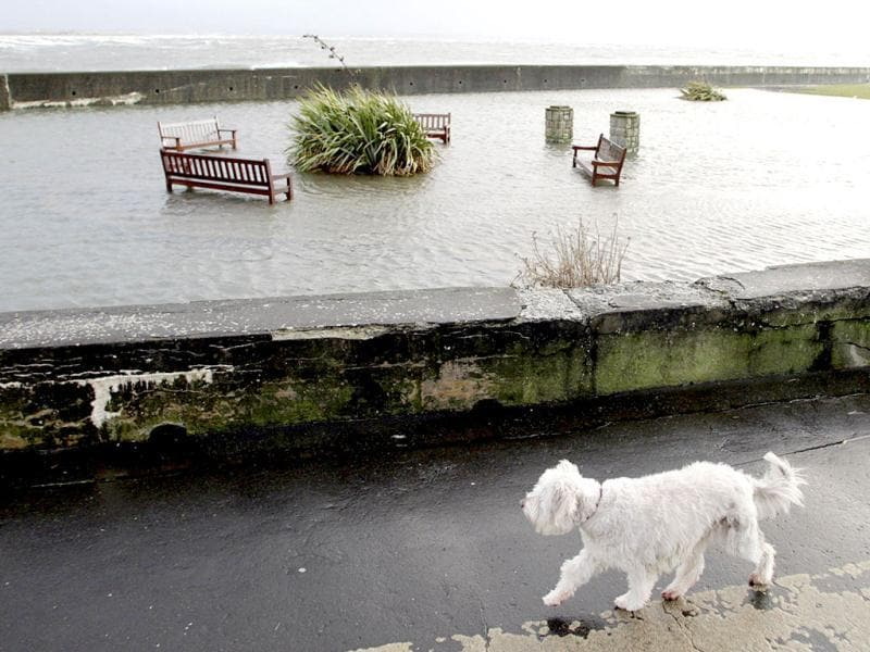 A dog walks past a flooded park on a promenade in Troon, Strathclyde, as high winds of up to 100mph/161kph cause damage in Scotland. (AFP Photo)