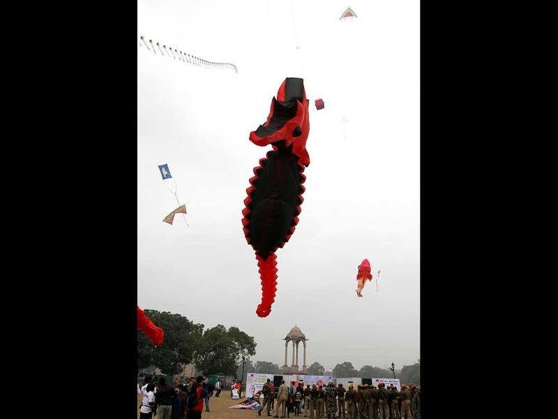 Kites of various shapes and sizes fly at India Gate on the occasion during th Kite festival 2012 , in New Delhi. (HT Photo/Sanjeev Verma)