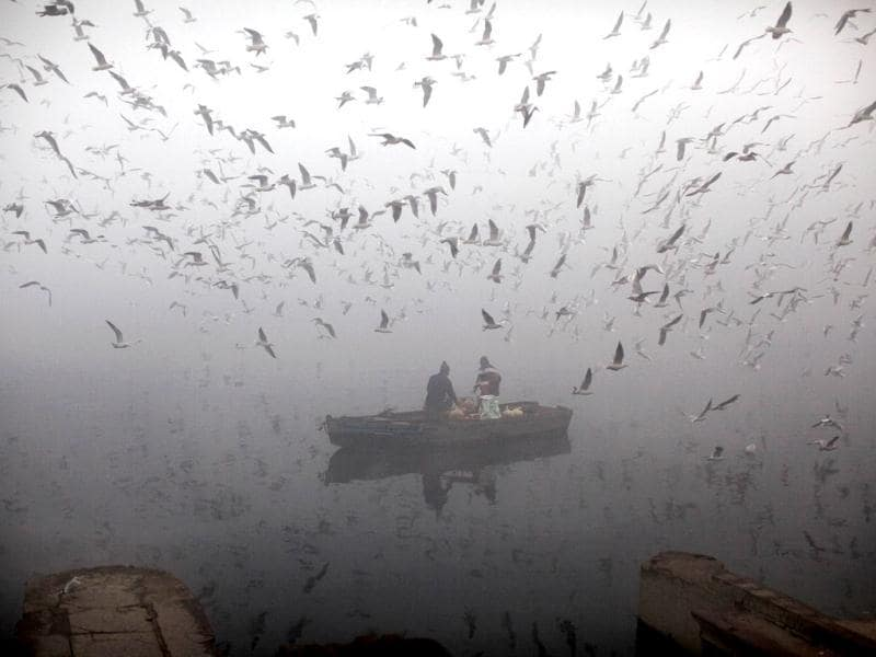 People feed birds from a boat on the Yamuna as it is enveloped by winter morning fog in New Delhi. AP/Kevin Frayer