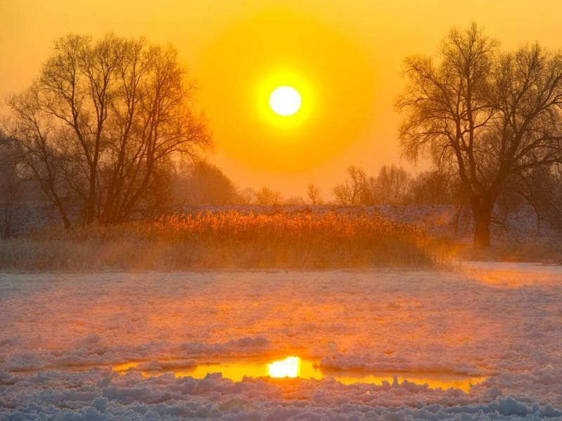 Sun rises over the frozen river Oder on early in Lebus, eastern Germany, where temperatures fell down to minus 20 degrees Celsius. (AFP Photo/Jan Woitas)