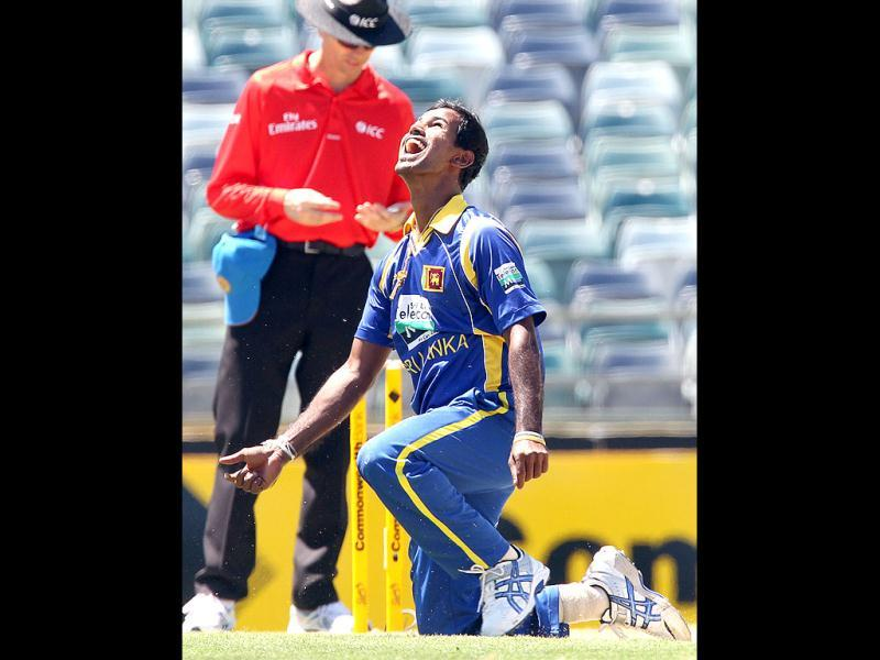 Nuwan Kulasekara reacts after he catched the ball to bowl Australian batsman Mike Hussey (unseen) during the Tri Nations ODI Cricket Series match in Perth. AFP