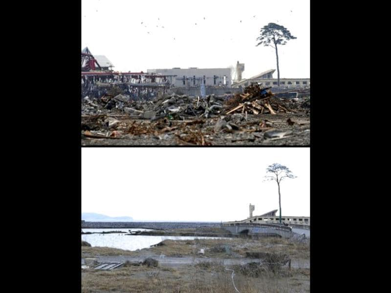 This combination of pictures shows a 10-metre high pine tree in Rikuzentakata, Iwate prefecture on March 29, 2011 (top) and the same scene as it appears on January 15, 2012 (bottom). It is the only tree to have survived the tsunami among some 70,000 trees located by the seashore to protect from salt, sand and wind damage. (AFP photo/Toshifumi Kitamura) (top) (AFP photo / Toru Yamanaka) (bottom)