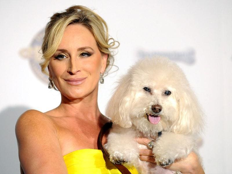 Real Housewives of New York star Sonja Morgan and her dog Millou. (Reuters Photo)
