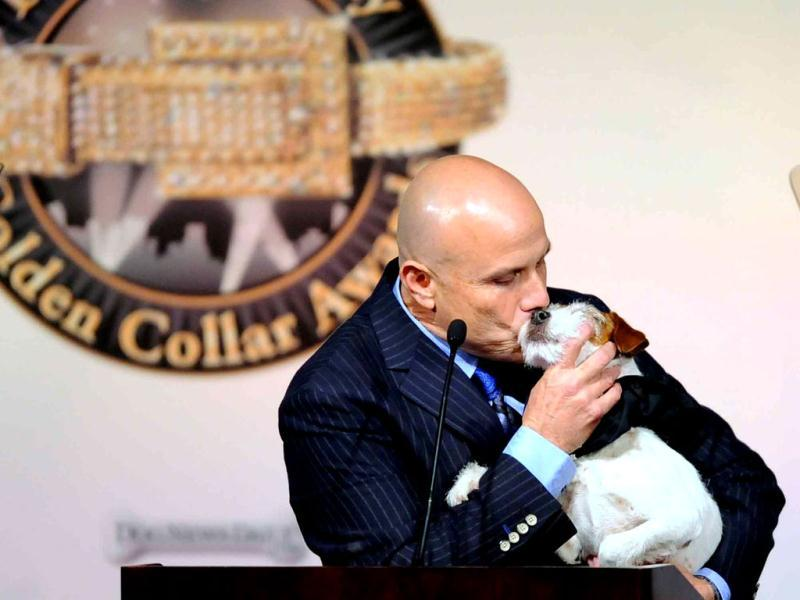 First annual Golden Collar Awards celebrates Hollywood's most talented canine thespians from Oscar nominated films and Emmy Award winning television shows in Los Angeles. (AFP Photo)
