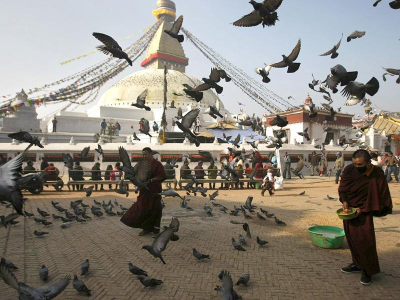 Exiled Tibetan monks feed birds at the Boudhanath stupa on the first day of the Tibetan New Year in Kathmandu, Nepal. AP Photo/Binod Joshi