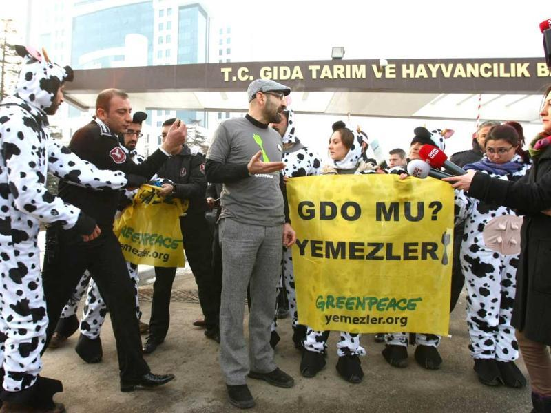 Security gurds move in on Greenpeace activists as they display a banner which translates as 'don't eat genetically modified food' as they wear cow costumes during a demonstration outside the ministry of agriculture in Ankara.AFP Photo/Adem Altan