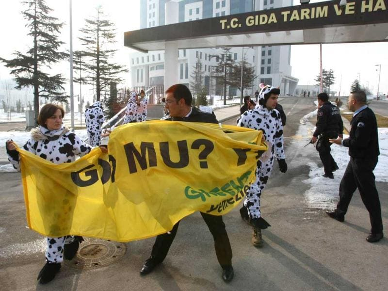 Security guards snatch a banner from Greenpeace activists which translates as 'don't eat genetically modified food' as they wear cow costumes during a demonstration outside the ministry of agriculture in Ankara. AFP Photo/Adem Altan