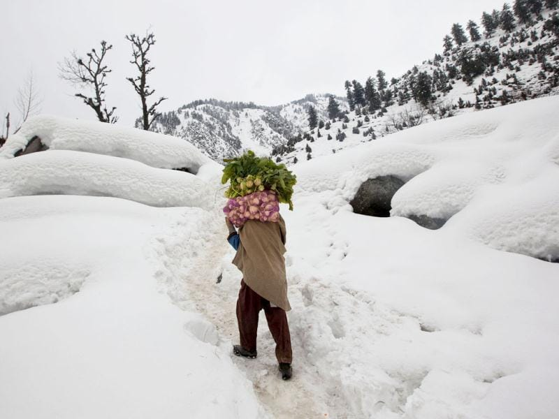 A Kashmiri villager carries vegetables on his shoulder as he walks home on a snow-covered path near Gagangeri, some 80 kilometers (50 miles) northeast of Srinagar. Heavy snowfall across Kashmir valley has prompted authorities to issue an avalanche warning for most areas lying close to the mountains, according to a news agency. Avalanches and landslides are common in the disputed Himalayan region. AP Photo/ Dar Yasin