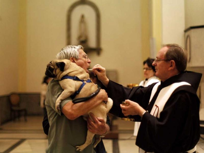 A man receives a consecrated wafer from a priest as he holds his dog before getting it blessed at Sao Francisco de Assis (Saint Francis of Assis) Church in Sao Paulo. Pet owners bring their animals to be blessed every year on the day of Sao Francisco de Assis, Brazil's patron saint of animals. REUTERS/Nacho Doce