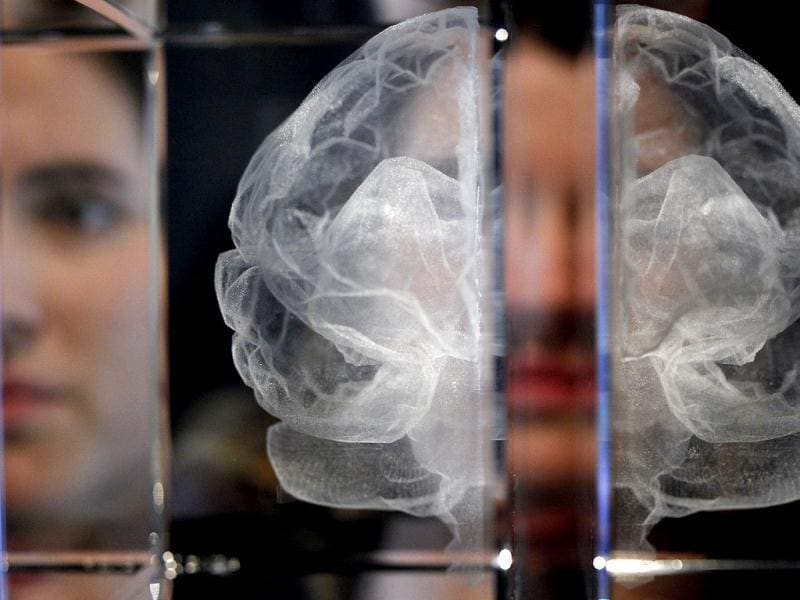 Wellcome Trust employee Zoe Middleton poses for the media by a work entitled My Soul by artist Katherine Dawson, that is a laser etched in lead crystal glass of the artist's own MRI scan, at an exhibition call Brains -The Mind as Matter at the Wellcome Collection in London. (AP Photo/Alastair Grant)