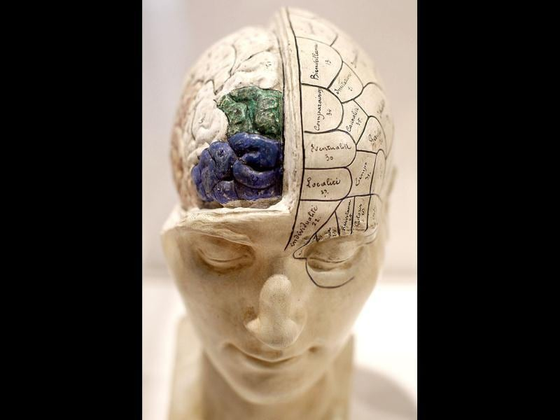 A French Phrenological model, from the mid 19th century, of a head with brain exposed is seen on display at an exhibition call Brains - The Mind as Matter at the Wellcome Collection in London. (AP Photo/Alastair Grant)
