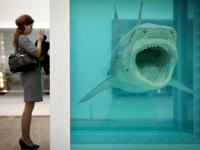 A woman looks at a creation by British artist Damien Hirst entitled The Physical Impossibility of Death in the Mind of Someone Living 1991 during the opening of his solo exhibition showcasing work spanning over two decades at the Tate Modern in central London. AFP Photo/Ben Stansall