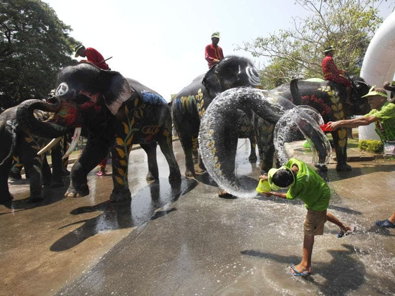 A boy splashes elephants with water during the Songkran water festival in Thailand's Ayutthaya province, about 80 km (50 miles) north of Bangkok. Songkran, the most celebrated festival of the year, marks the start of Thailand's traditional New Year. Reuters/Chaiwat Subprasom