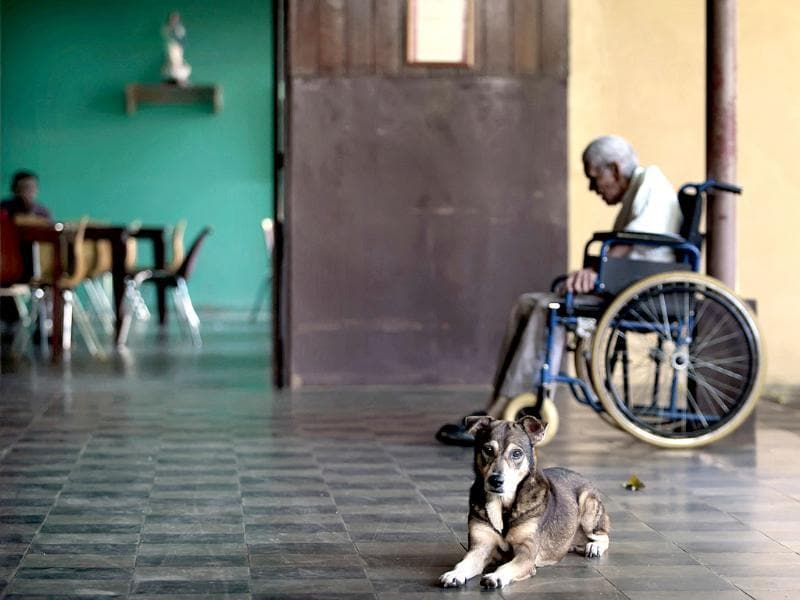 A dog sits near a man on a wheelchair in a home for the elderly in Masaya, about 25 km (16 miles) from Managua. Around 52 elderly people, mostly abandoned by their relatives, live in the retirement home called San Antonio that was built in 1911. Reuters/Oswaldo Rivas