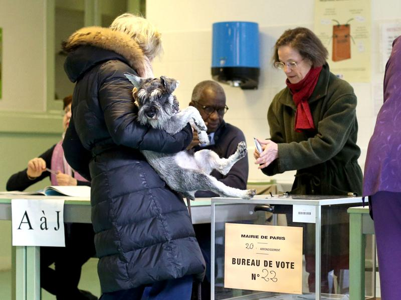 A woman, with her dog in her arms, casts her ballot at a polling station in Paris, for the first-round poll of French 2012 presidential election. AFP/Thomas Coex