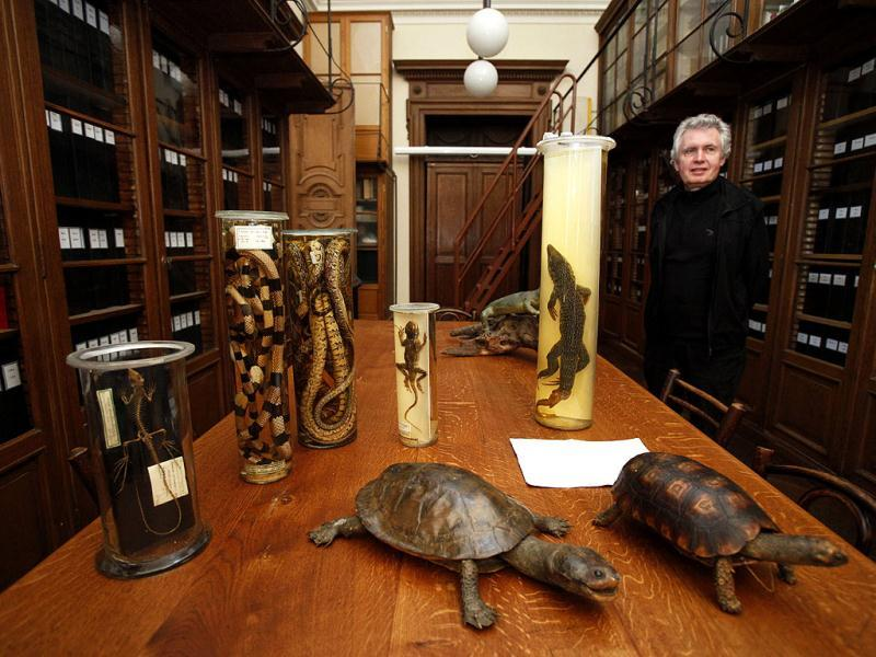 Historic preserved animals and reptiles stand on a table of a laboratory at the Naturhistorisches Museum Wien (Museum of Natural History) in central Vienna. Reuters Photo/Herwig Prammer