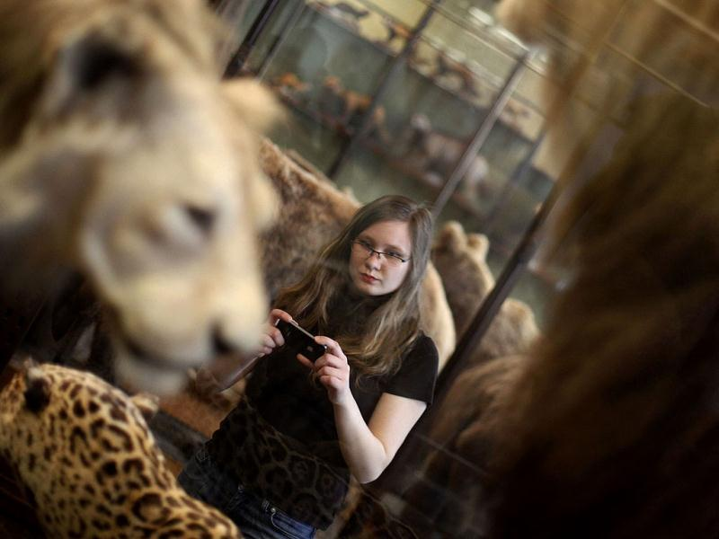 A visitor looks at historic stuffed animal in an exhibition hall of the Naturhistorisches Museum Wien (Museum of Natural History) in central Vienna. Reuters Photo/Herwig Prammer