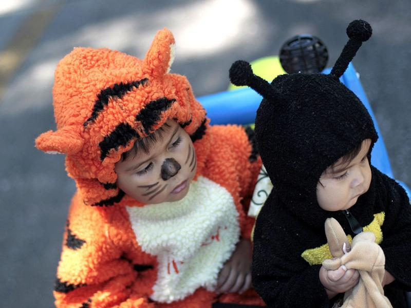 Children, dressed as a tiger and a bee, participate in a demostration by animal rights groups in Guatemala, Guatemala City. (Reuters)
