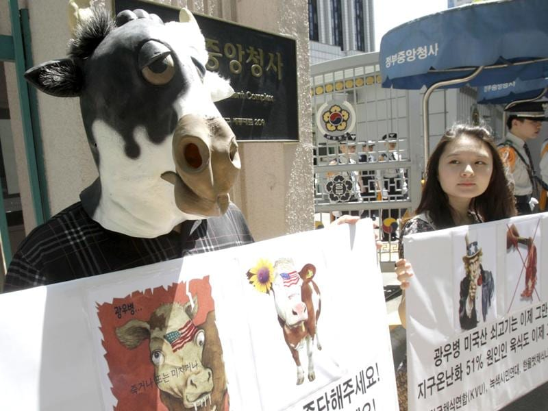 South Korean animal rights activists stage a campaign against import of US beef in front of the government complex in Seoul, South Korea, following the discovery of mad cow disease in a US dairy cow last week. AP Photo/Ahn Young-joon
