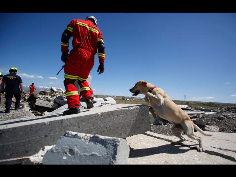 Members of the Hermosillo Task Force, a K-9 search and rescue unit from Mexico, train with their dogs and members of Utah Task Force 1 to search for earthquake victims in a simulated rubble pile in Salt Lake City, Utah. The team from Mexico is one of four newly formed teams in the country that specializes in the search and recovery of people in collapsed structures. The team is training in Utah for a week after spending a week working with teams in California and will move on to Colorado next. Reuters