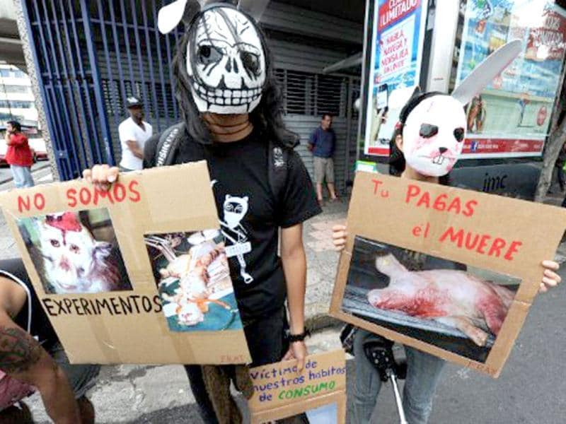 Costa Rican citizens march with posters showing pictures during a protest against animal abuse in San Jose, Costa Rica. AFP Photo/Rodrigo Arangua