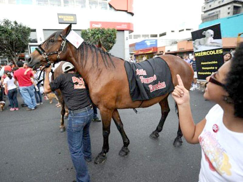 A man and his horse take part in a protest against animal abuse in San Jose, Costa Rica. AFP Photo/Rodrigo Arangua